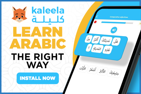 When learning Arabic, students are confused if they should learn Modern Standard Arabic or a dialect. This article sheds some light