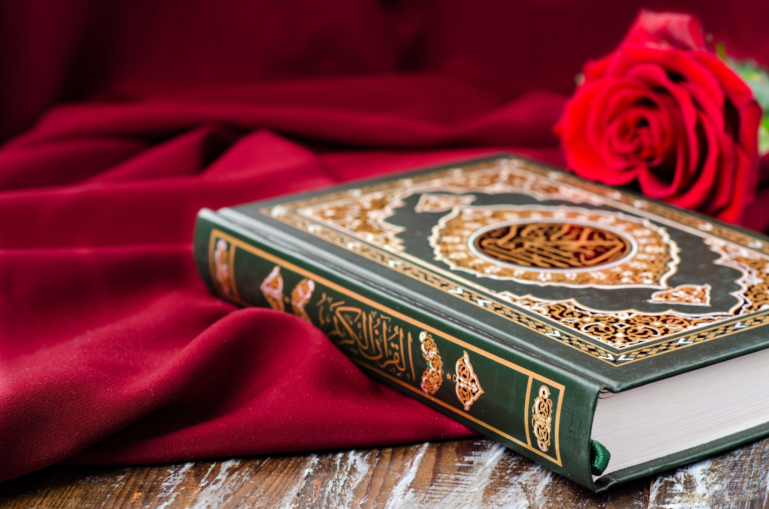 To learn Quranic Arabic, you should focus on Arabic grammar and Arabic words, or Arabic language courses? Click here to find out.