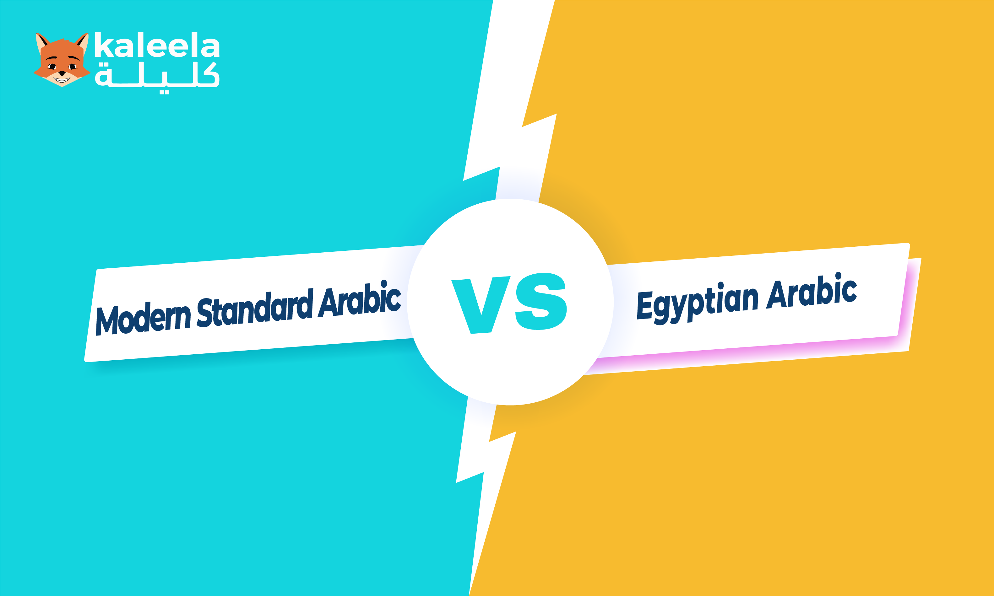 The Difference Between Modern Standard Arabic and Egyptian Arabic
